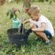 jardinería con niños