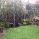 Exceso de lluvia en tu jardín